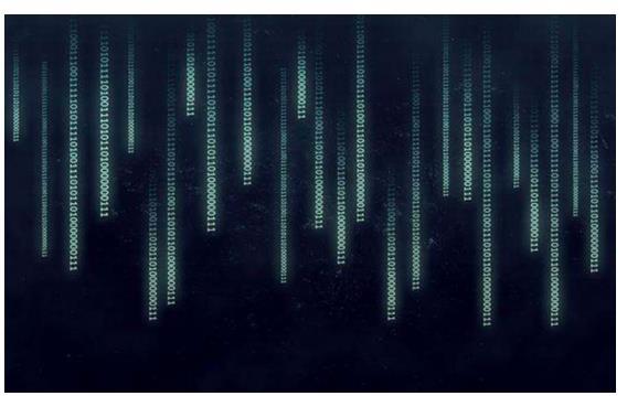 低代码开发将开启软件人工智能开发新篇章